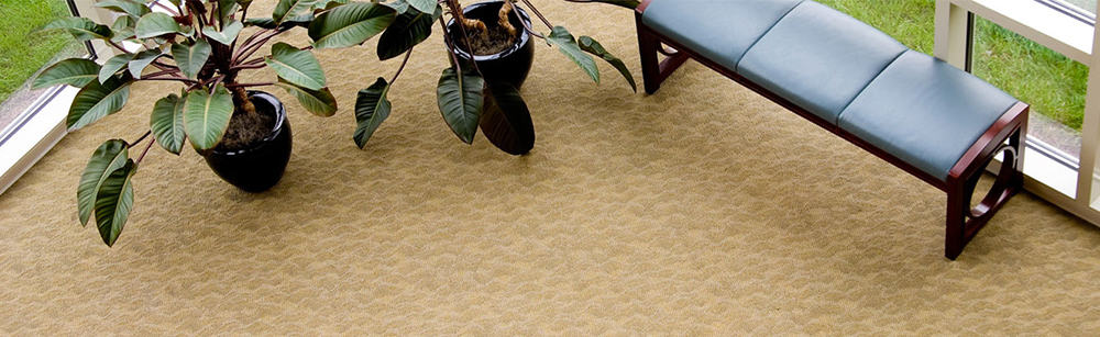commercial carpet cleaning services in san antonio
